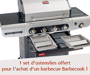 Voir les barbecues Barbecook