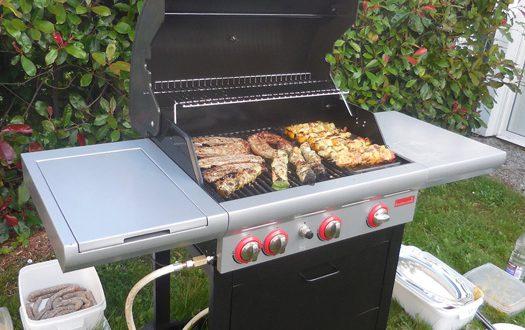 Barbecue à gaz Barbecook Spring 350