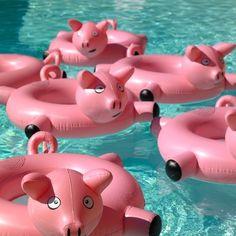 bouee-gonflable-enfant-cochon