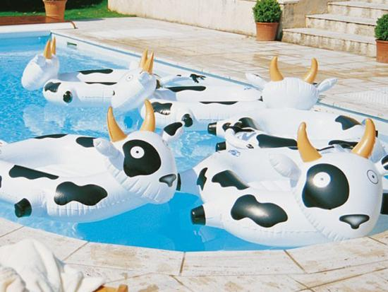 bouee-gonflable-enfant-vache