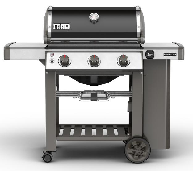 raviday-barbecue-weber-genesis-II-E310