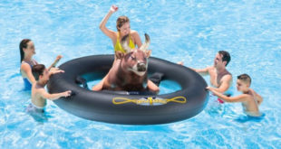 taureau-gonflable-intex-inflatabull-rodeo-raviday-piscine-2