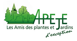 Logo Apeje