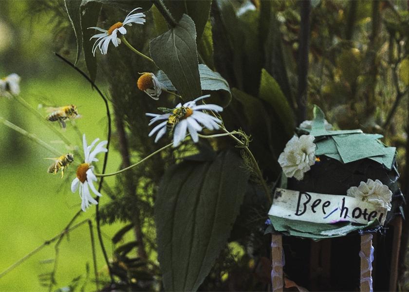 Fiskars offre une Happy Bee Box gratuite pour l'achat de 30€ d'outils Fiskars