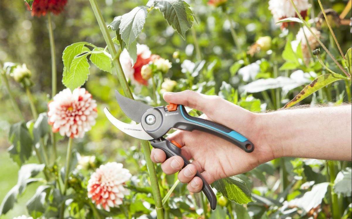 Sécateur Comfort Gardena pour bois vert et branchages