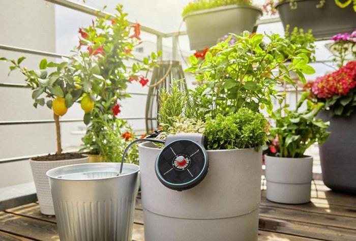 AquaBloom sur pot de fleurs avec réservoir d'eau