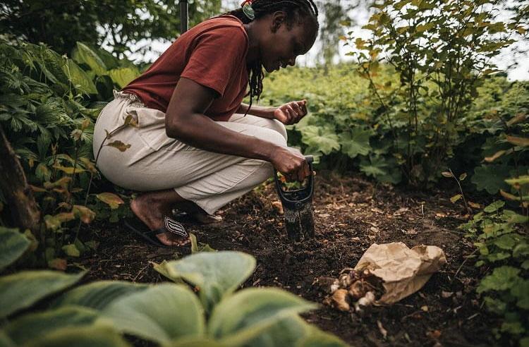 Plantoir à bulbes Fiskars